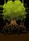 Arbor sp. z o.o.